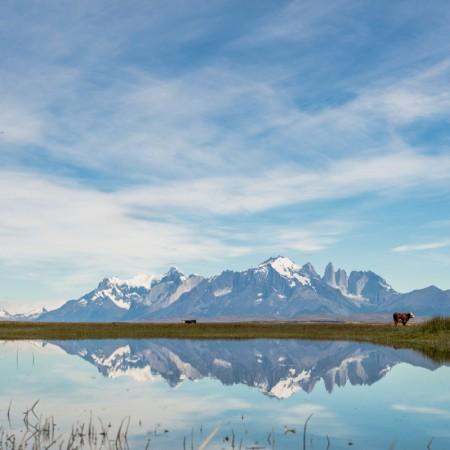 Pesca con Mosca Patagonia Chilena