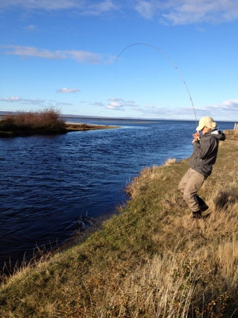 Pesca con Mosca en Puerto Natales